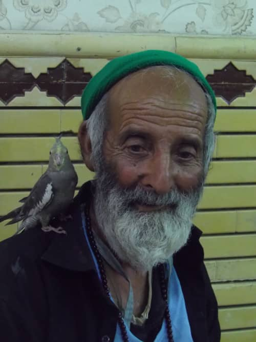 Iranians and their birds