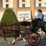 Ispahan Slider horse-drawn carriages