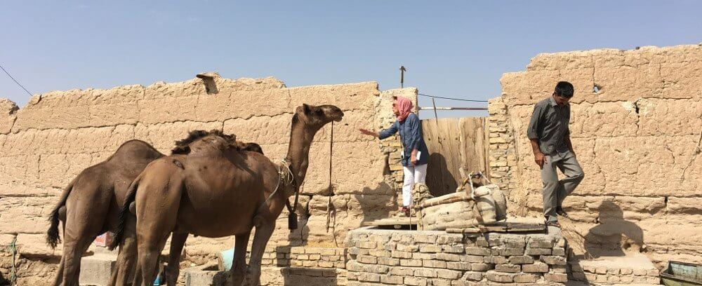 Yazd – The village of Saryazd and more