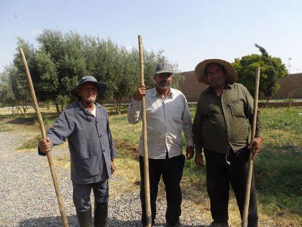 Meeting of gardeners in the garden of Dolat Abad in Yazd
